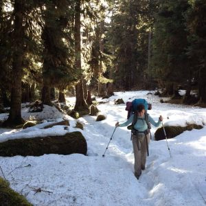 The snow gets deeper. Trekking poles with snow baskets became a necessity.