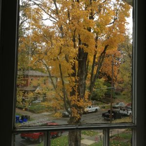 More autumn. (It's my favorite season.)