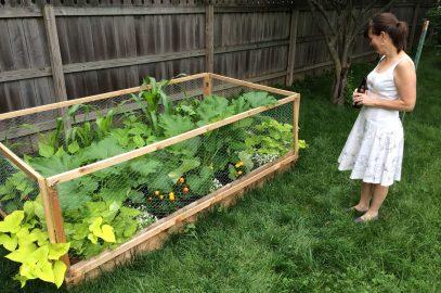 First garden
